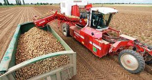 Как правильно ухаживать за сельхозтехникой. Подготовка машин к зимнему простою