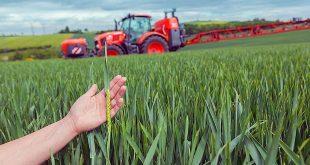 Поддержка государством фермерских хозяйств